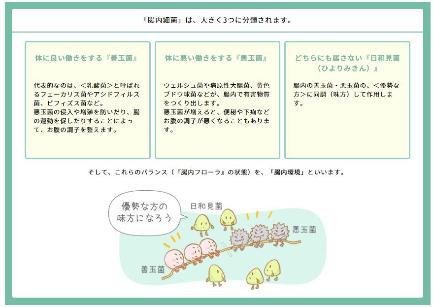 腸内フローラサプリにて改善する腸内フローラ内の細菌の種類