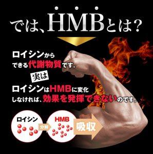 HMBサプリの中に入っているHMBの効果説明②