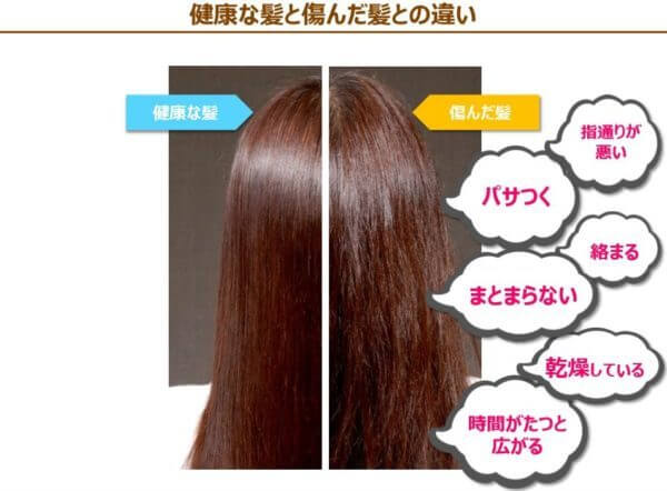 頭皮紫外線対策で通常と傷んだ髪の参考データ