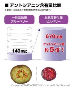 おいしいコラーゲンドリンクのブルーベリーの効果の説明図